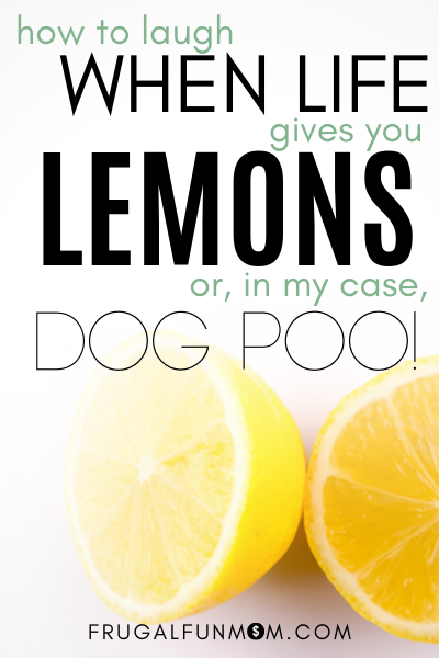How To Laugh When Life Gives You Lemons, Or In My Case - Dog Poo | Frugal Fun Mom
